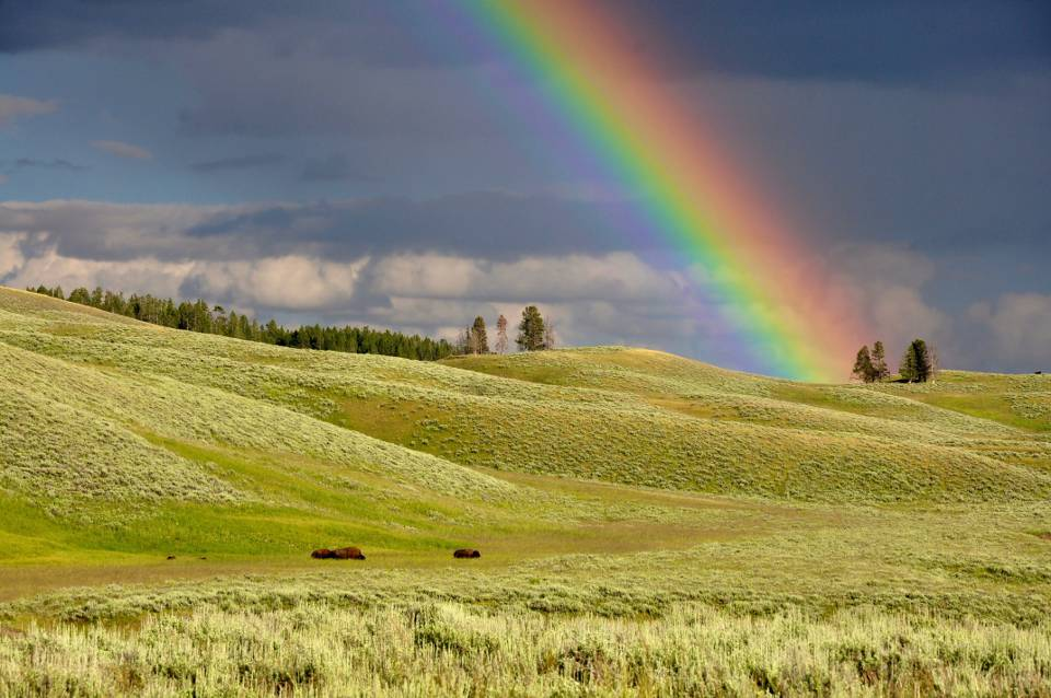 The rainbow represents God's promises.