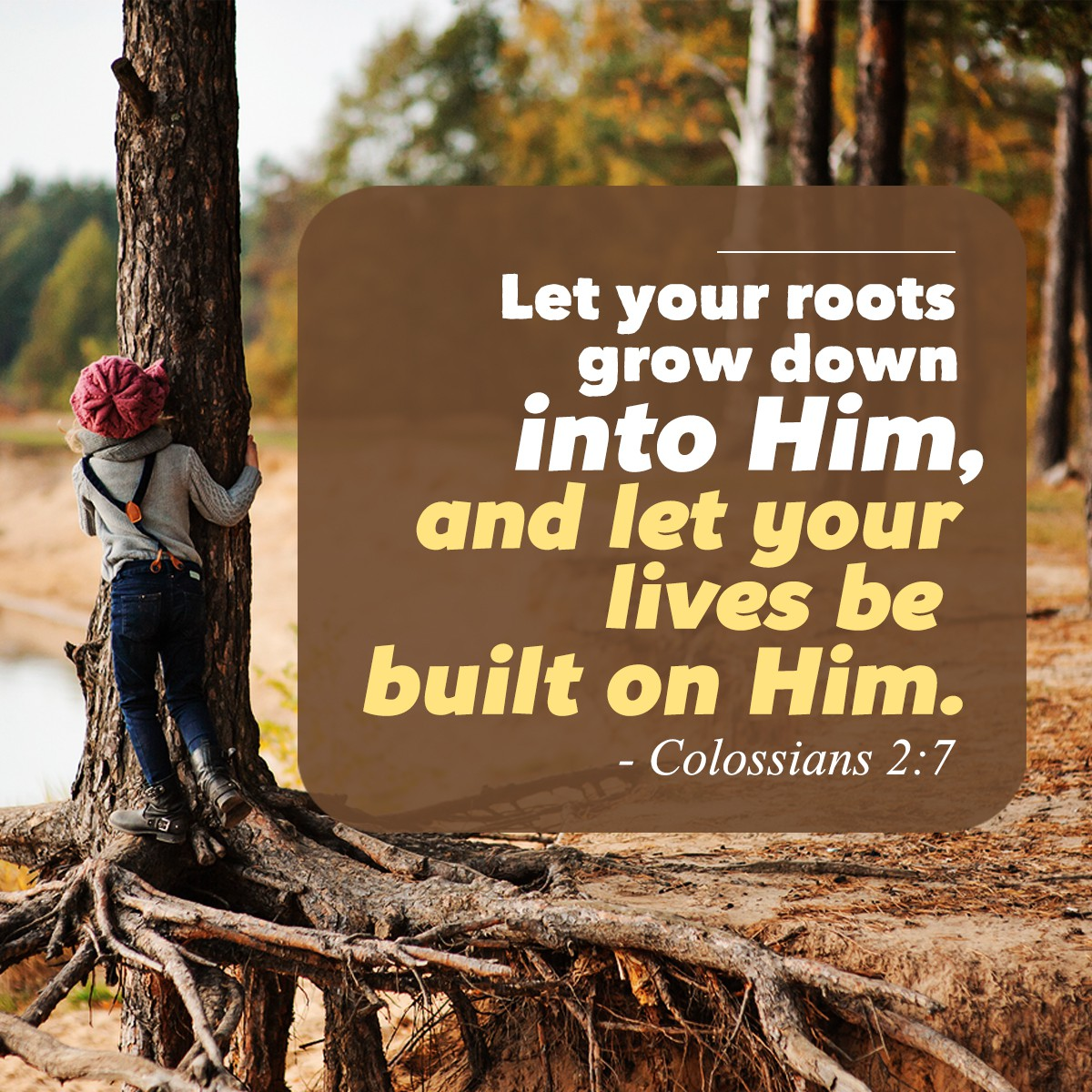 Let your roots grow down into Him Col. 2:7